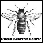Queen Rearing Course 2