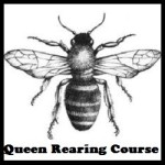 Queen Rearing Course